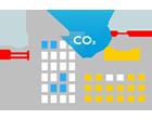 carbon consumption